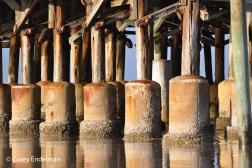 Daytona Pier