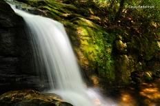 Raven Cliff Falls 3