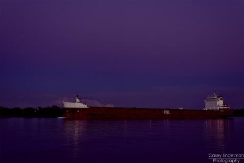 Birchglen at twilight